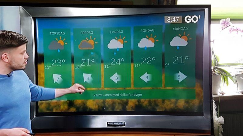Fin vejrudsigt