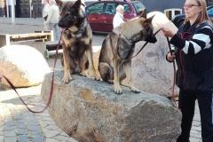 Nikon og Doris som bjerggeder