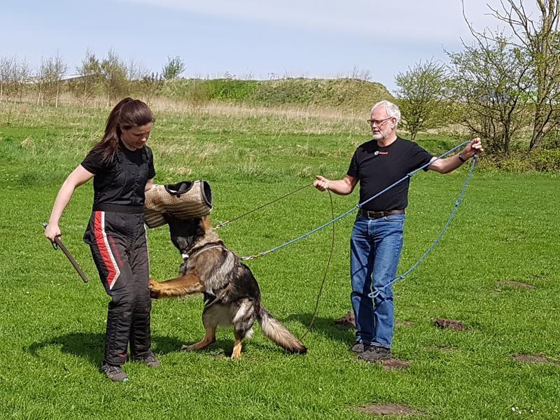 Leif og Eenar