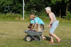 Sussie og Dixie ført af Ketty